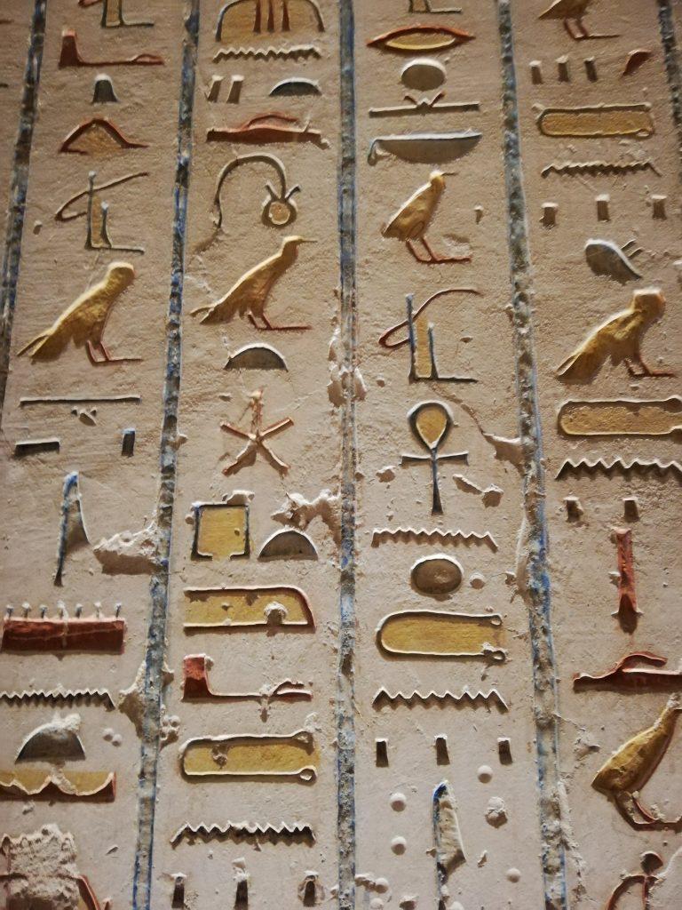 Geroglifici - Crociera sul Nilo